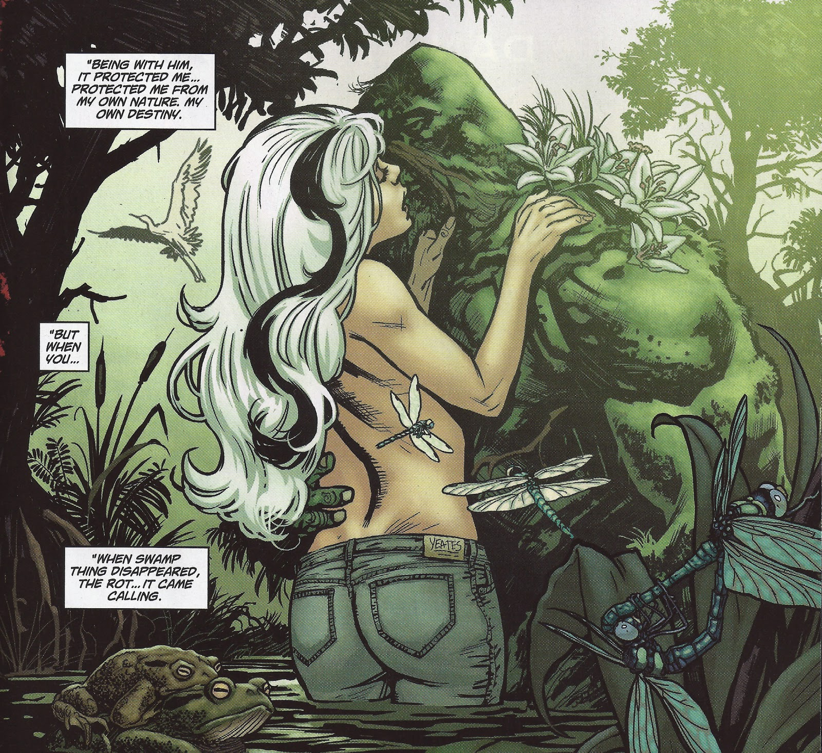 swampthing3_paquettesnyder